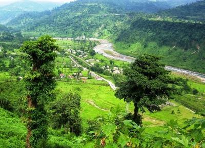 Bindu in Dooars